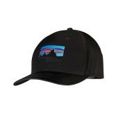 Patagonia 73 logo roger that hat black